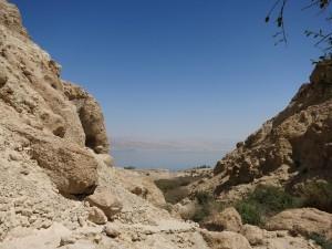 Мертвое море,Иудейская пустыня